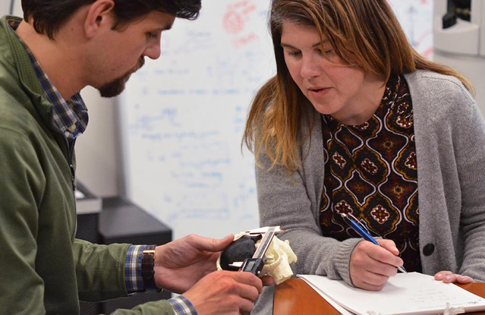 Dr. Beth Ripley and Brian Strzelecki perform a quality check on a 3D printed model of a kidney. Photo via Department of Veterans Affairs.